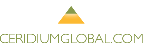 Deerfield Beach logo